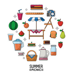 White background poster of summer picnic and vector