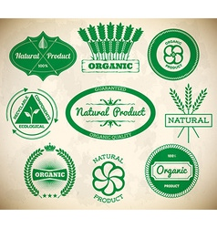 Set of vintage eco labels Collection 1 vector image vector image