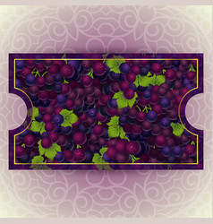 Bunches of the red grapes with dew drops vector