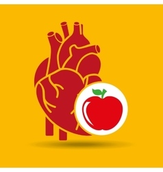 Concept healthy heart delicious apple food icon vector