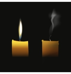 Realistic candle flaming and extinct wick with vector