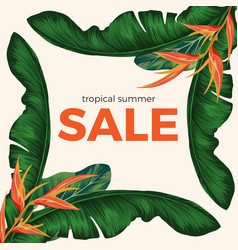 tropical summer sale promo poster with rainforest vector image vector image