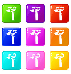 Baobab icons 9 set vector