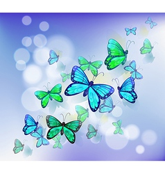 Butterflies in a stationery vector image