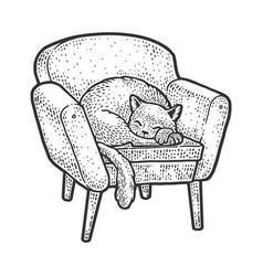 cat on armchair sketch vector image