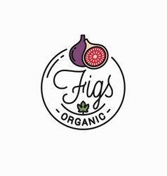figs fruit logo round linear logo fig slice vector image