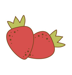 fresh strawberry fruit icon vector image
