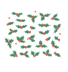 Hand drawn christmas holly on white background vector