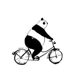 Panda bear on bicycle vector
