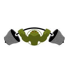 Strong frog powerful toad with large muscles vector