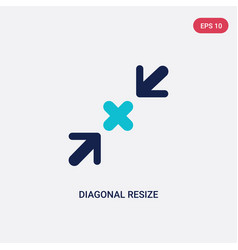 Two color diagonal resize icon from arrows vector