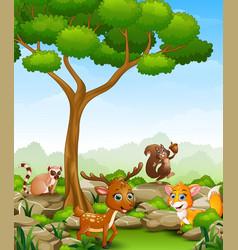 wild animal cartoon in the jungle vector image