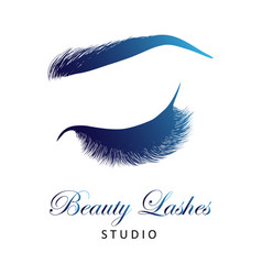 Lady stylish eye and brows with full lashes vector