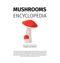 Orange cup boletus mushroom vector