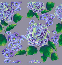 beautiful hydrangea on a gray - blue background vector image