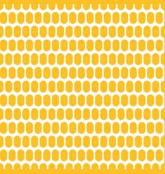 Corn grain seamless background vector