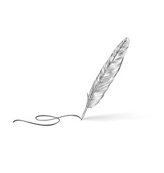 Feather pen icon calligraphy sign vector
