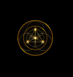 Gold magic alchemy symbols sacred geometry logo vector