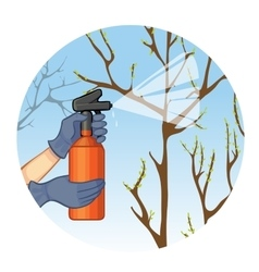 Hands spraying tree in garden with substance vector