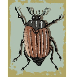 Vintage background with beetle vector
