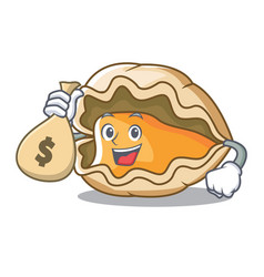 With money bag oyster character cartoon style vector
