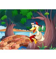 A duck reading near the bridge vector image vector image