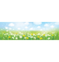 spring field landscape vector image vector image
