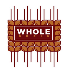 whole grain natural product promotional emblem vector image vector image