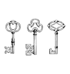 Engraving sketches of medieval keys vector image