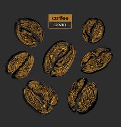 Coffee bean sketch vector