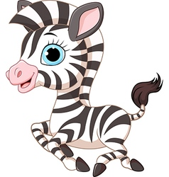 Cute zebra running isolated on white background vector image