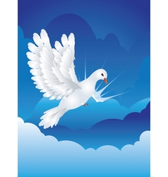 Dove in the Sky5 vector