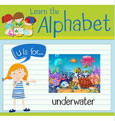 Flashcard letter u is for underwater vector