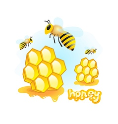 honey mead bee honeycomb element vector image