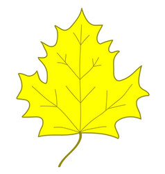 Maple leaf yellow sign 307 vector