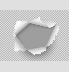 paper realistic hole ripped torn hole on vector image