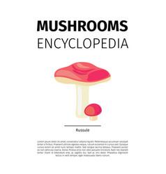 Russule mushroom vector