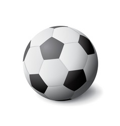 White and black soccer ball icon isolated sports vector