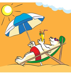 White bear on a beach vector image vector image