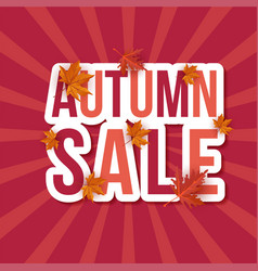 autumn sale leaves background vector image