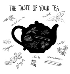 Hot tea flavors tea herbs and spices vector