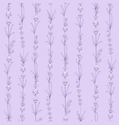 seamless pattern of lavender flowers on a violet vector image