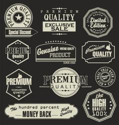 Set of Retro Vintage labels vector image