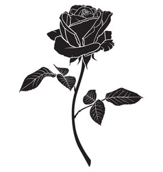 Silhouette of a rose flower vector