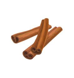 Three brown cinnamon sticks vector