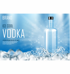 vodka bottle with ice cubes ad strong alcohol vector image