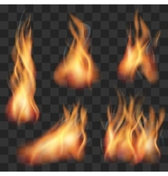 realistic transparent fire flame set vector image