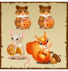 Set of squirrel with hamsters and mouse vector image vector image