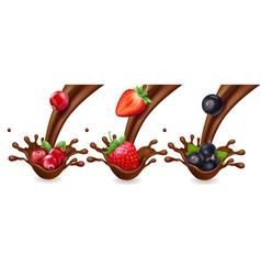 Chocolate and berries raspberry strawberry vector