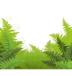 Fern meadow vector
